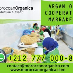 Argan oil cooperatives